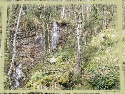 Une source dans la forêt